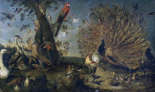 Concierto de aves (Atribuido a Frans Snyders, Mediados del siglo XVII)
